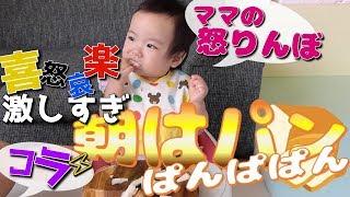【こだわりが強すぎる1歳児の朝食】~離乳食完了期始まり~1歳の赤ちゃん みはるんchannel