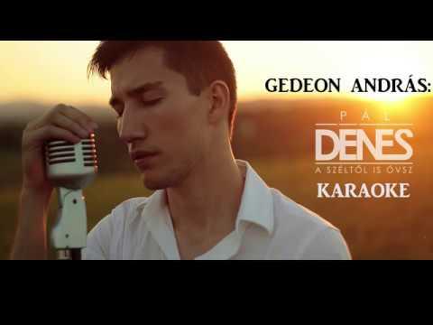 Pál Dénes - Széltől is óvsz karaoke