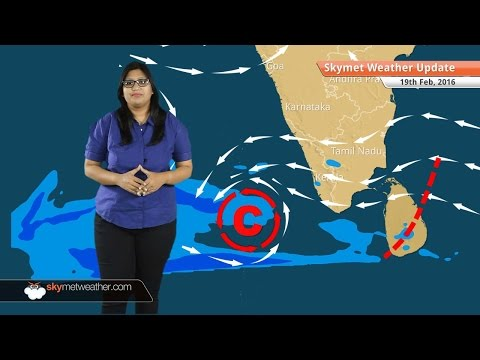 Weather Forecast for February 19: Good rain likely over Rajasthan, Punjab, Haryana, Delhi