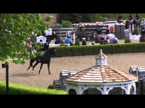 Video of LOGAN ridden by OLIVIA SBROCCO from ShowNet!