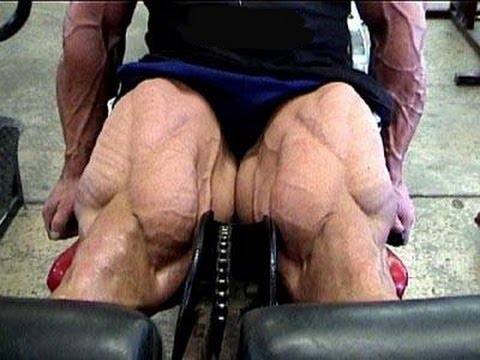 Leg Extensions ! Unnecessary Exercise ??? Image 1