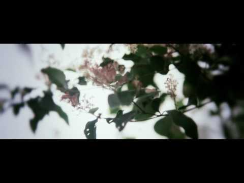 ef - longing for colors - official video