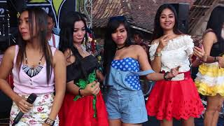 Kopi Lambada Apip Yonanda New Kingstar Hd 2017