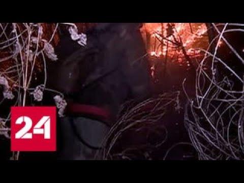 Лесные пожары окружили Благовещенск, в регионе введен режим ЧС - Россия 24