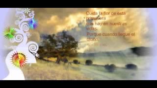 Cuida La Flor - Postales Con Frases De Amor Con Fondo Musical