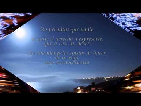 Mark Knopfler - Radio City Serenade