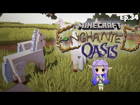horses Galore Minecraft Enchanted Oasis Ep 34 video