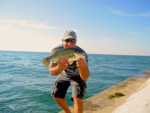 Vishuscirquel for Lake erie pier fishing