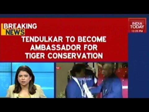 Sachin Tendulkar To Become Ambassador For Tiger Conservation