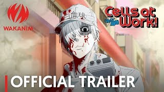 Cells at Work! | Official trailer [English Sub]