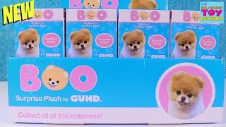 Boo Cutest Dog Surprise Plush Mystery Blind Box Series 1 Gund Toy Review | PSToyReviews
