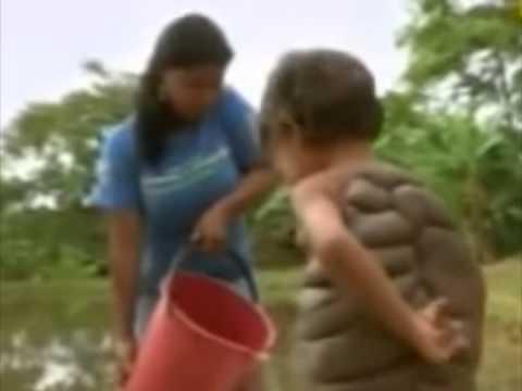 Sorprendente Niño tortuga
