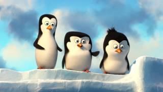 Pingvini iz Madagaskarja