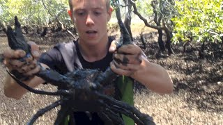 BACON OF THE SEA - Mud Crabs caught BAREHANDED - Catch n Cook | TDB
