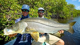 MASSIVE Topwater Snook Fishing