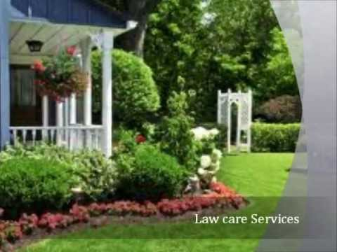 Lopez Lawn Care Services and Best Tree Services in Allen,TX Best Tree Services Carrollton,TX