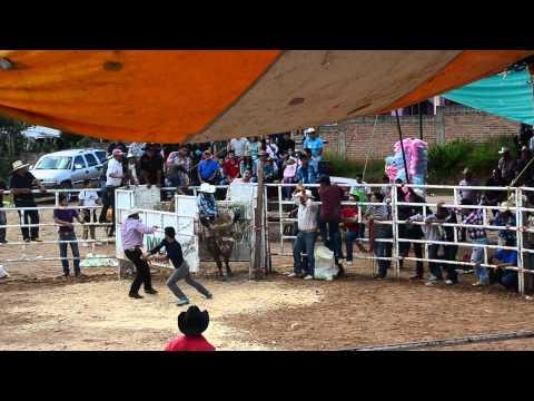 jaripeo-en-ucareo-julio-20141-hd.html