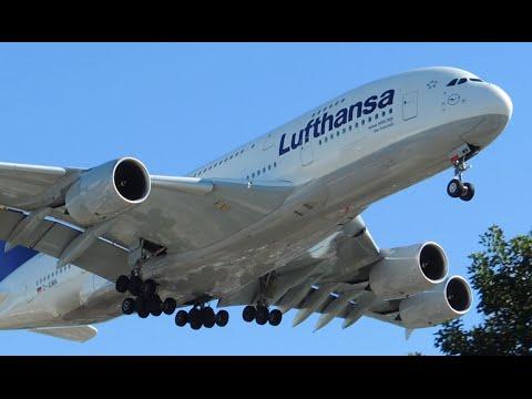Lufthansa Airbus A380-800 [D-AIMN] landing in LAX
