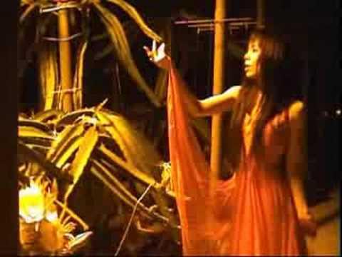 新月の夜 奥飛騨ドラゴンと鮎罹