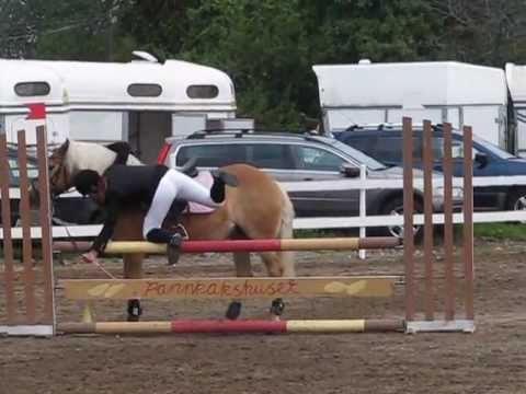 Showjumping, FALLS and BLOOPERS | Avramlingar | Horsefails