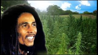 Watch Bob Marley Aint No Sunshine When Shes Gone video