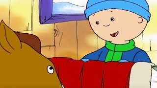 Caillou English Full Episodes | Caillou and a Little Pony | Cartoon for Kids | Caillou Holiday Movie