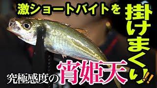 【アジング】激ショートバイトを掛ける裏技とは!?(漁港)