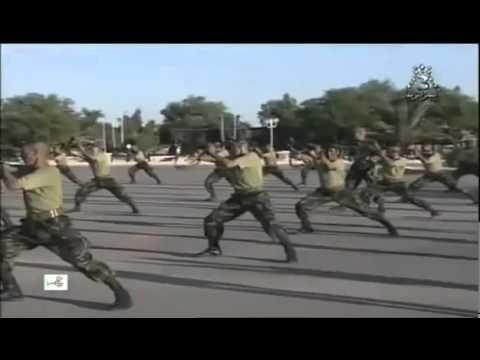 Armée Nationale Populaire ALGERIE A_N_P.flv