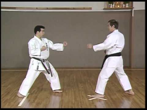 Kanazawa Hirokazu S K I F  Complete Guide Vol 3