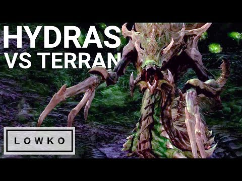 StarCraft 2: HYDRALISKS vs Terran?