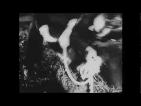 Adicts - Popcorn