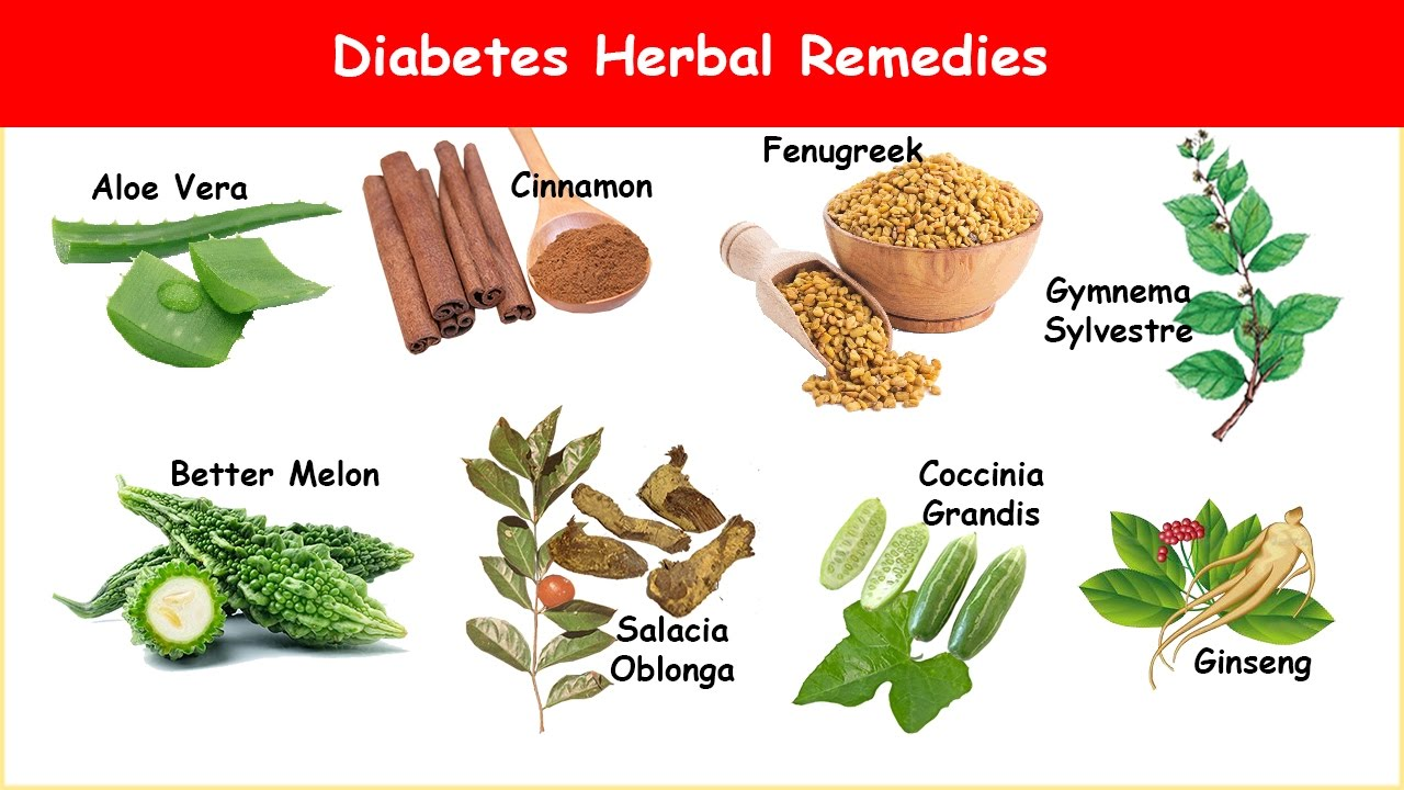 Diabetes Herbal Treatments - YouTube