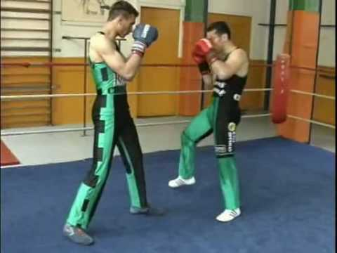 Savate Combos
