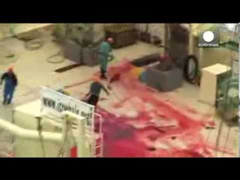 Exposed: Japan kills whales inside sanctuary - Sea Shepherd video