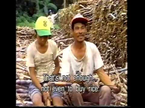 No Time for Play (Child Labour in the Philippines)