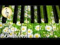Lagu Beethoven Classical Music for Studying, Concentration, Relaxation  Study Music  Piano Music
