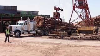 Weyerhaeuser Lumber Mill Bruce, MS (Short Version)