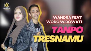 Download lagu Wandra feat. Woro Widowati -Tanpo Tresnamu ( )