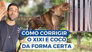 COMO CORRIGIR O XIXI E COCÔ