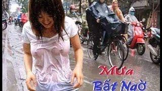 ẢNH ĐẸP - Những hình ảnh hài hước chỉ có tại Việt Nam -P2