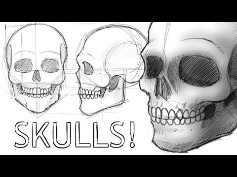 How to draw skulls for Draw with jazza mural