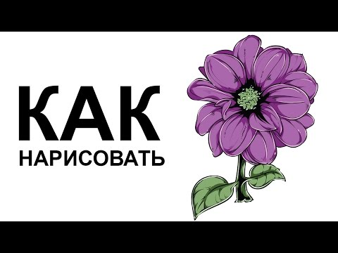 Видео как нарисовать красивый цветок поэтапно