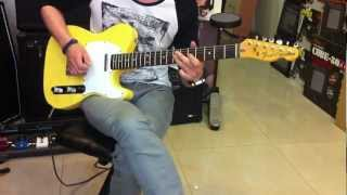 Fender Japan - Telecaster BECK JAM
