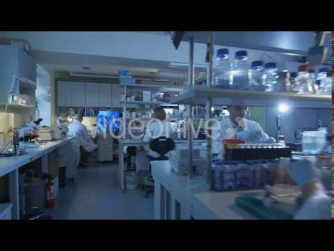 Caucasian Scientists are Working in a Modern Laboratory - Stock Footage | VideoHive 14138039