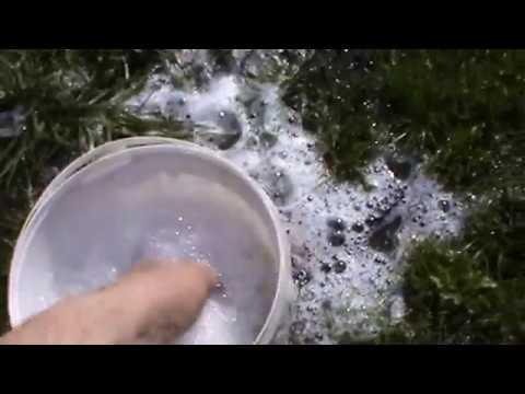 как сохранить червя для рыбалки видео