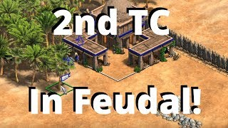 Cumans DOUBLE TC BOOM In Feudal Age Build Order! | Aoe2 DE