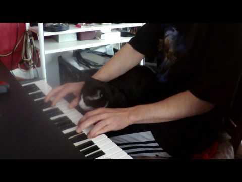 download lagu Cat Loves Keyboard gratis