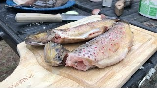 Best Camping Recipes | Grilled Trout + Turkey Hunting | FOOD PORN WARNING