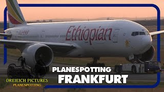 Planespotting Frankfurt Airport   August 2017   Teil 2