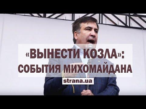 «Вынести козла». Самое яркое видео с МихоМайдана | Страна.ua